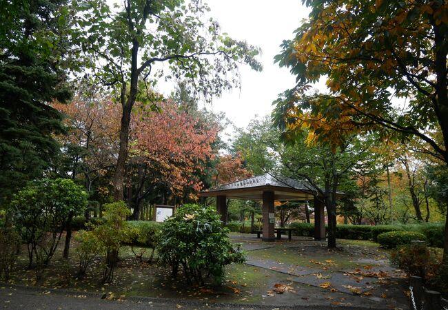 青い森公園