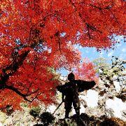山の上の半僧坊は燃えるような紅葉