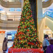 12月はクリスマスツリーがセンターにお目見えします!