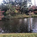 小石川後楽園 大泉水