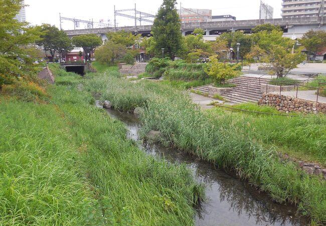 岐阜駅南側にある、ちょっとした水の公園