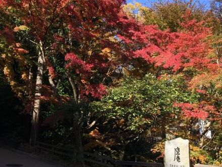 アマン京都 写真