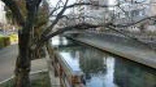 水門川遊歩道 四季の路