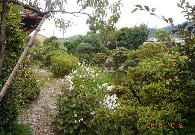大奥の庭園