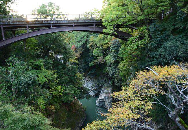 日本三奇橋の一つの甲斐の猿橋