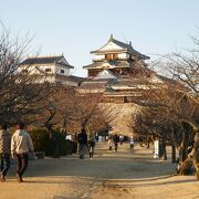 眺望抜群の松山城
