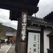 特別な秋の天龍寺