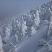 青森市街と樹氷と雲谷
