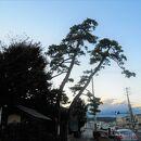 二木の松史跡公園