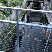 ジェラールの瓦工場と水屋敷跡