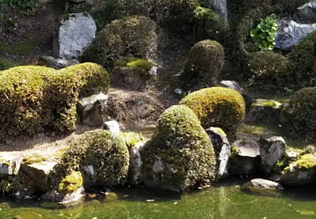 安楽寺庭園(滋賀県長浜市)