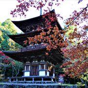 紅葉の名所湖東三山のひとつ、本堂と三重塔は鎌倉時代の代表的建築物で国宝です。