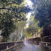 嵐山で行きたい場所のひとつ