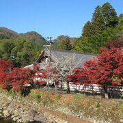 金堂や五重塔の美しさ、紅葉風景に感動