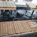 石和温泉駅前公園あしゆ