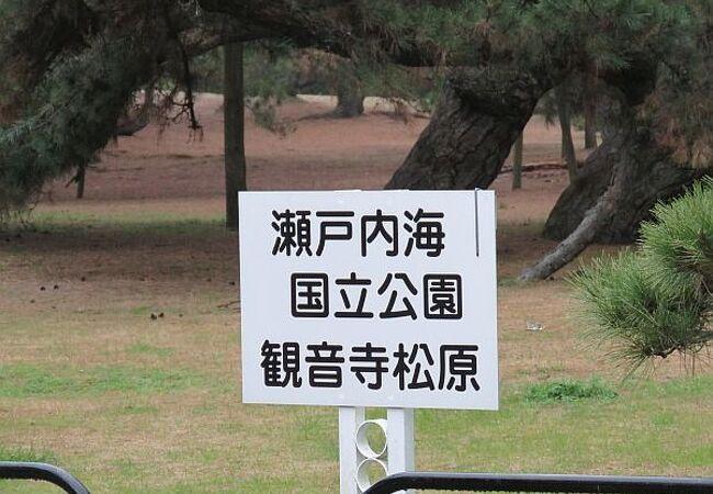 銭形砂絵のある松原