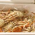 「おけしょう鮮魚」毎年セコ蟹の茹で上げを頼む、信頼出来るお店♪