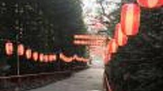 松焚祭 (どんと祭)