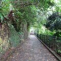 晴れ男なのに,雨の中の首里城公園でした
