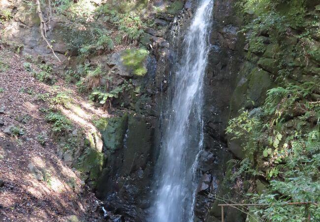 小ぶりな不動滝は奥湯河原にありました