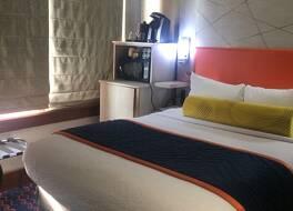 ベスト ウェスタン プレミア ヒストリック トラベラーズ ホテル アラモ/リバーウォーク