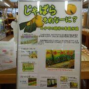 「じゃばら」という柚子やかぼすに似た柑橘が特産品