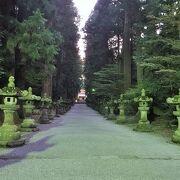 参道、鳥居、社殿、境内、全てが神々しい。