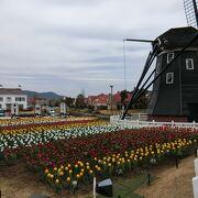 まるでオランダの風景