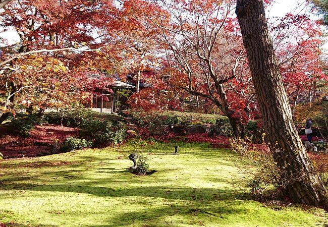 天龍寺の南にある紅葉が美しいスポット