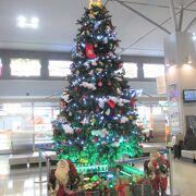 クリスマスツリーが飾られていました。