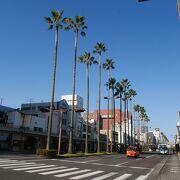 南国宮崎そのものの通り、橘通りはいい雰囲気で