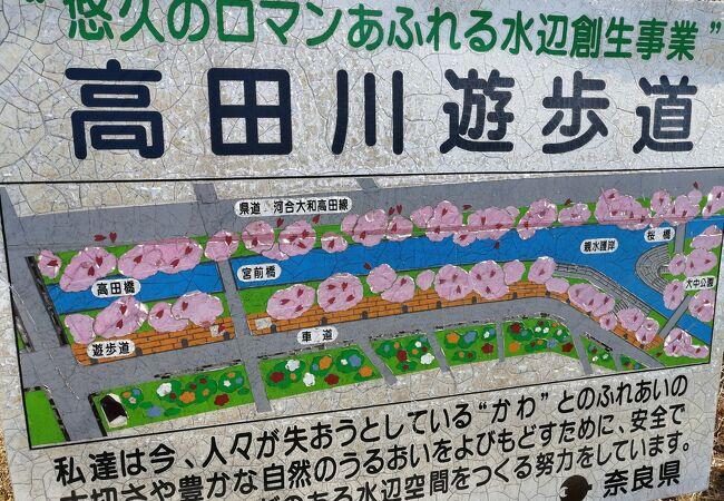 名所 高田千本桜