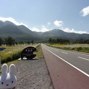 標高1,000m、九州の大自然を堪能あれ!短時間の散策コースもあるのでちょっとでも良いので歩いてみて!