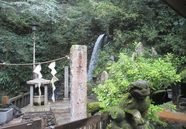 薬王院の水行道場の一つ「琵琶滝」 (もう一つの水行道場は裏高尾にある「蛇滝」)