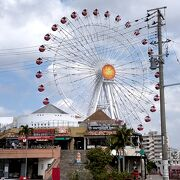 那覇市内からレンタカーで。