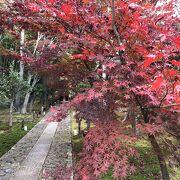 静かに紅葉を楽しみました。
