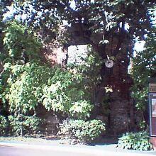 マラカニアン宮殿 / 大統領記念博物館