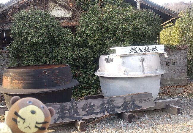 梅マークの日本酒