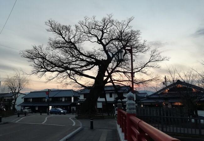今井町並み散歩