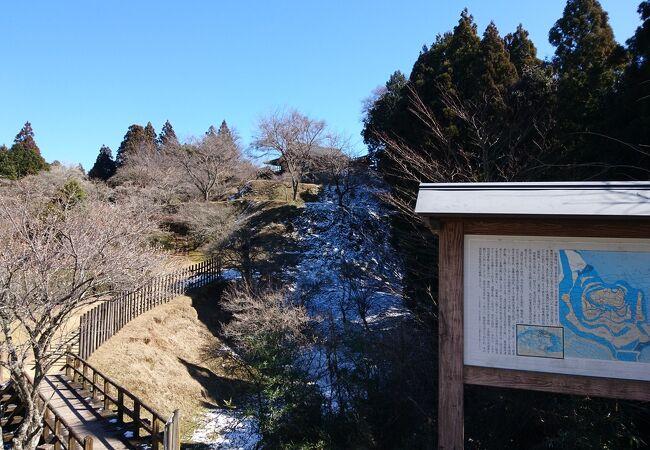 歴史の里田峯城