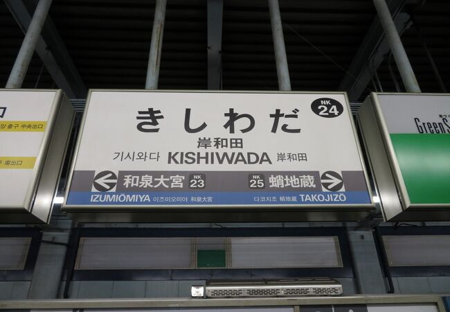 なんばと関西空港・和歌山市を結ぶ。