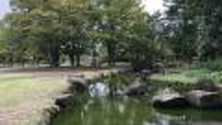 茅ヶ崎中央公園