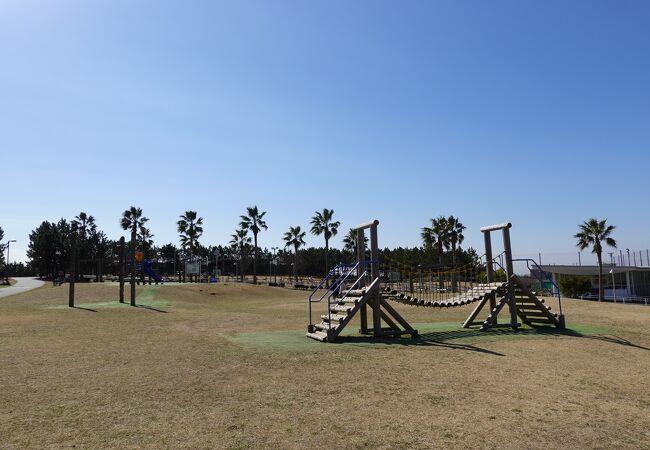 東京湾沿いにある充実した公園