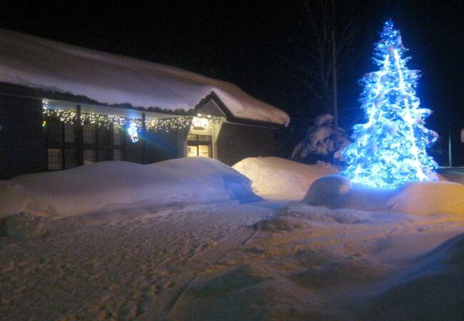冬の夜のピピカフェの様子