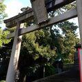 金沢城そば