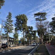 国道1号線の一部区間が松並木になっている