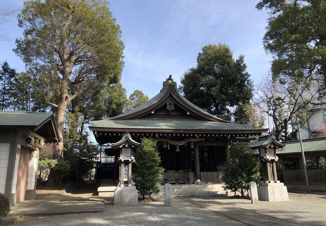 本殿は、寒川町の重要文化財