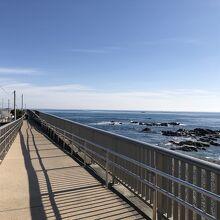 海岸の遊歩道