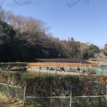 草柳園フィッシングセンター