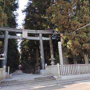 巨木に囲まれた神社